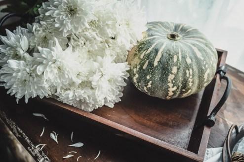 Julie Powell_NL Pumpkins-06744