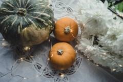 Julie Powell_NL Pumpkins-06763