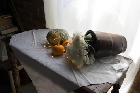 Julie Powell_NL Pumpkins-06766