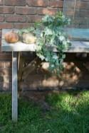 Julie Powell_Pumpkins-2748