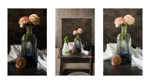 Create dramatically beautiful images with indirect natural light
