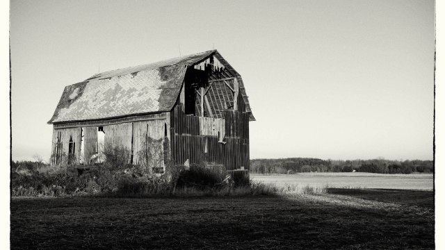 Creating black and white images with Silver Efex Pro