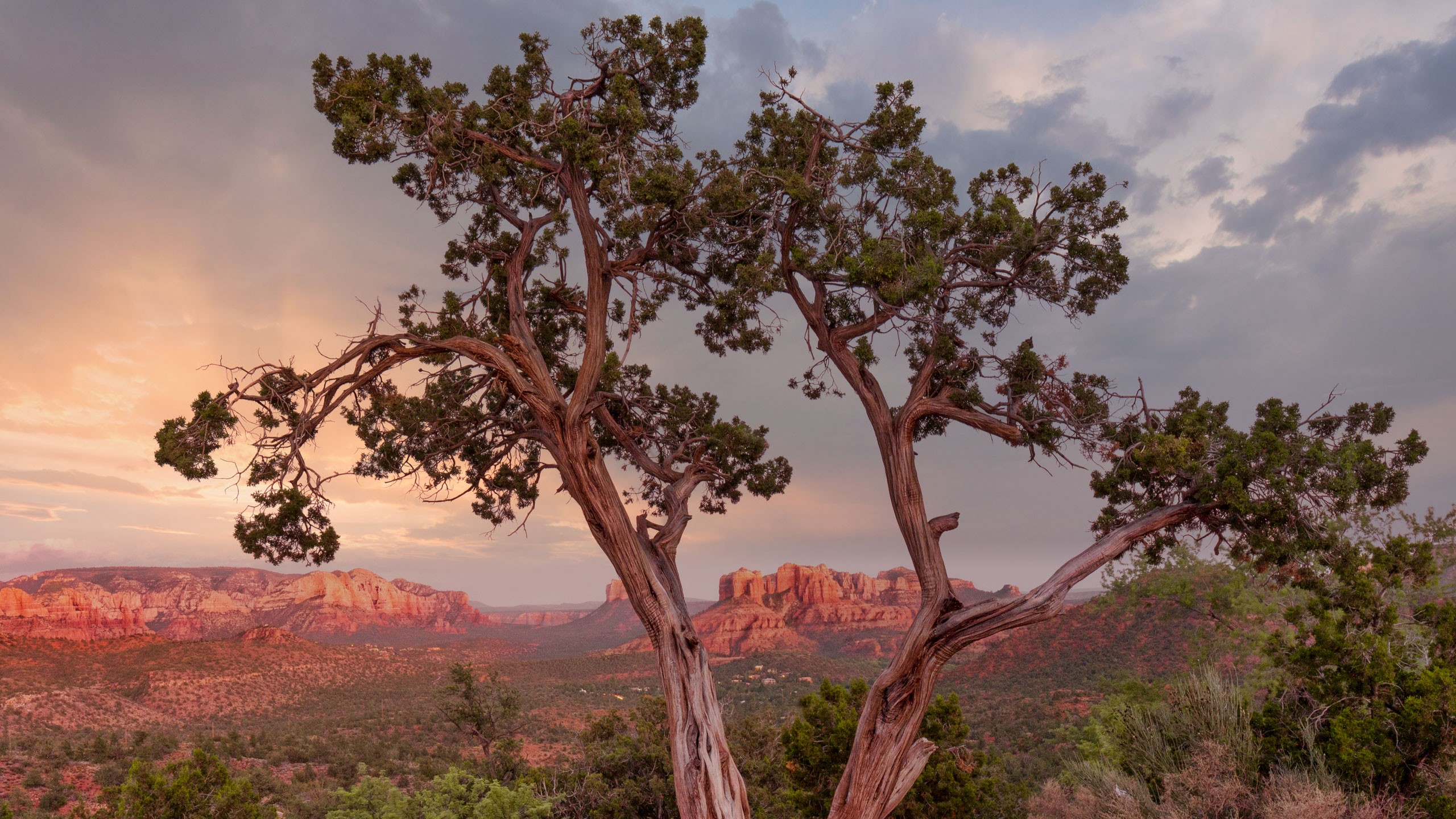 Sky replacement with red rocks and juniper