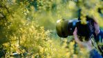 Make Your Resolution to Improve Your Photography