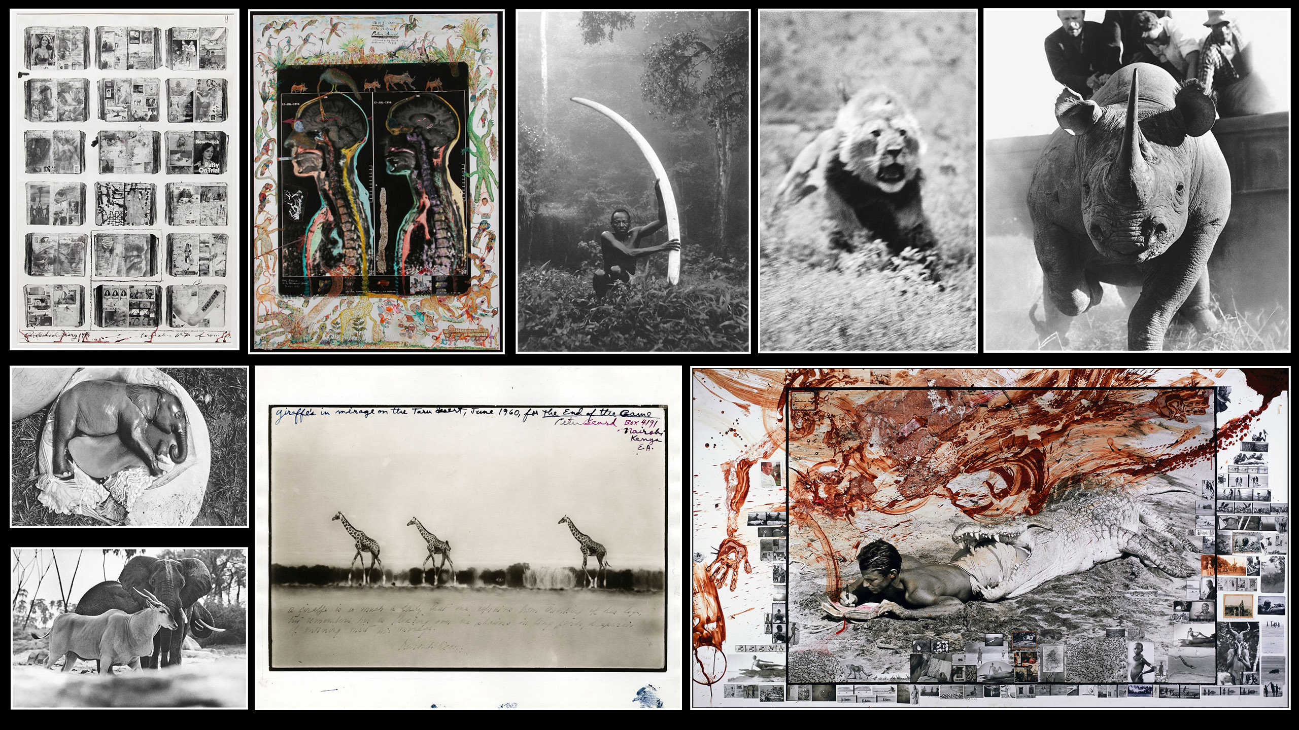 On Photography: Peter Beard, 1938-2020