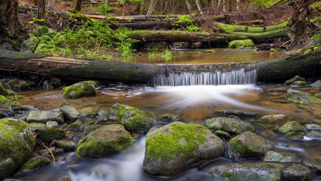 The major pros and cons of focus stacking for landscapes