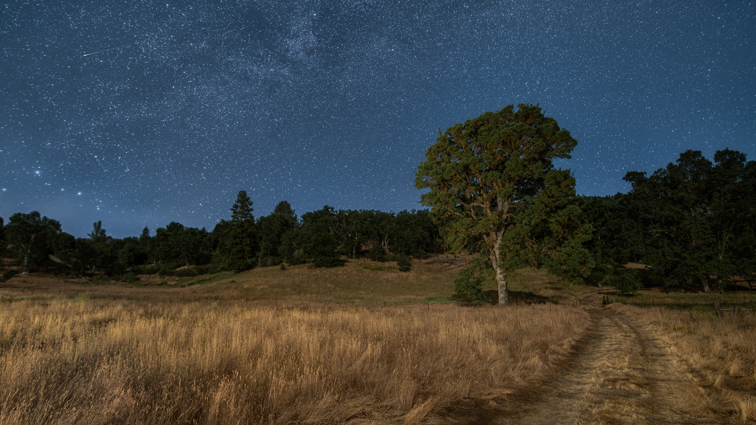 How does Aurora HDR do with a starry night sky?