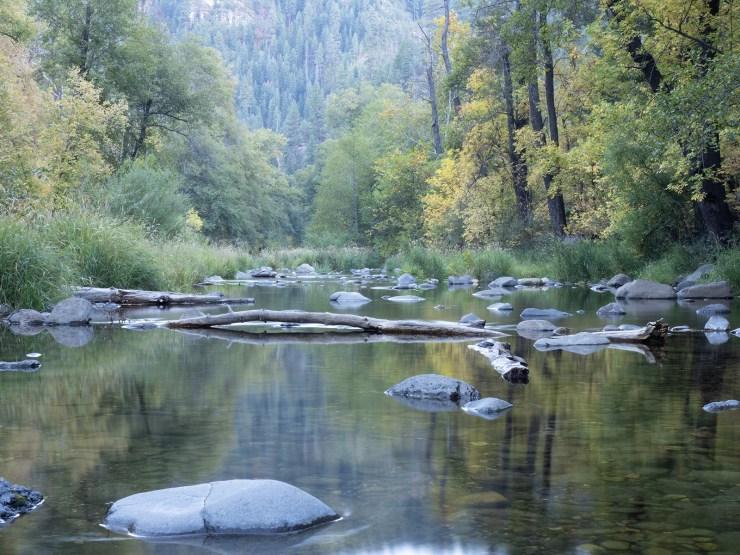 oak creek raw image