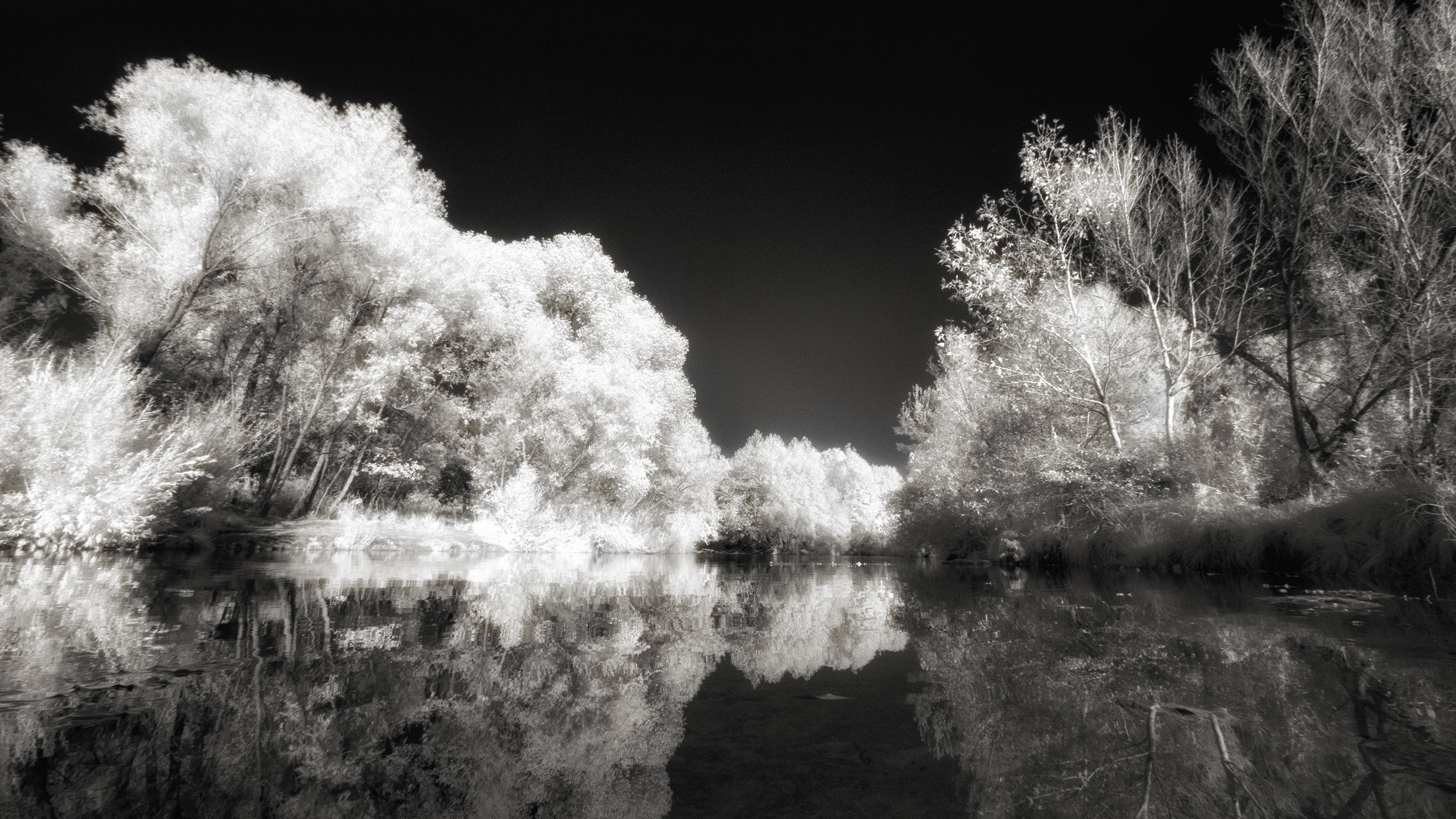 Speed up your infrared Adobe Camera RAW file process