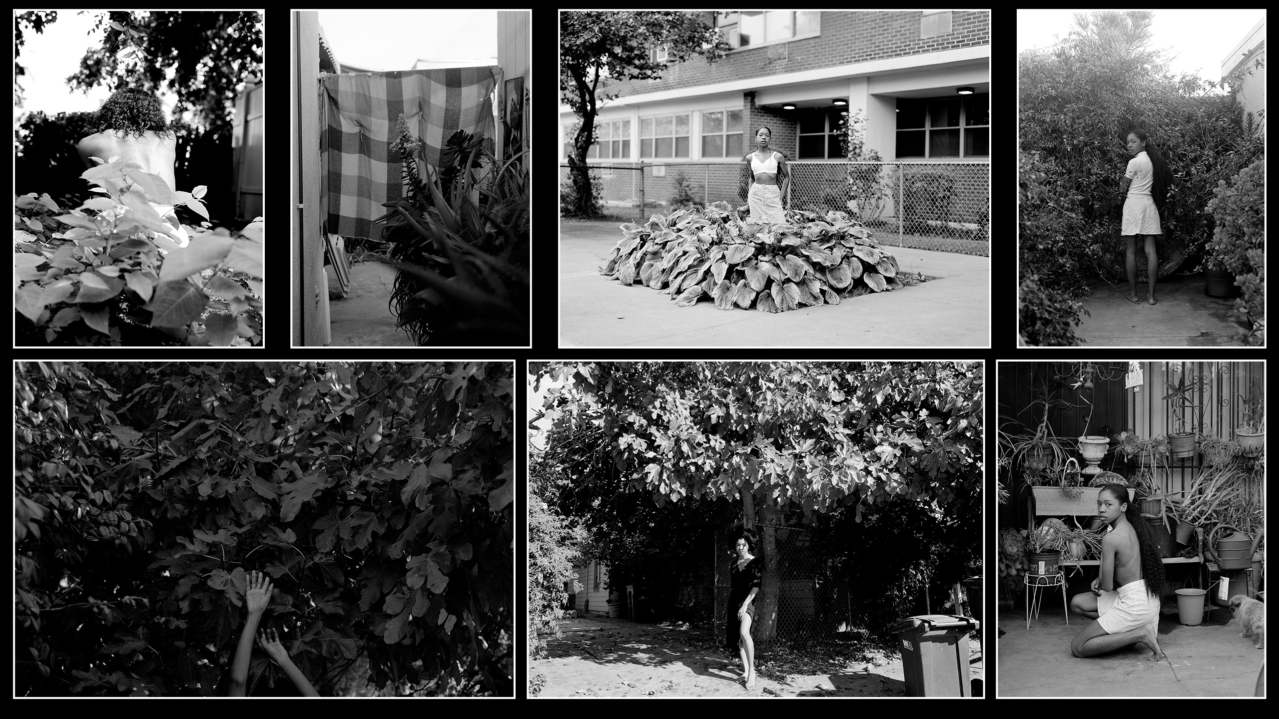 On Photography: Chanell Stone, 1992-present