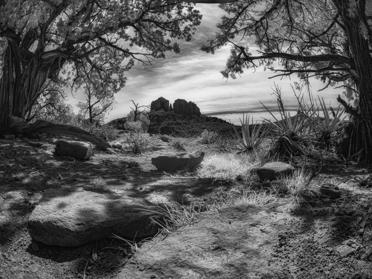 infrared photography image