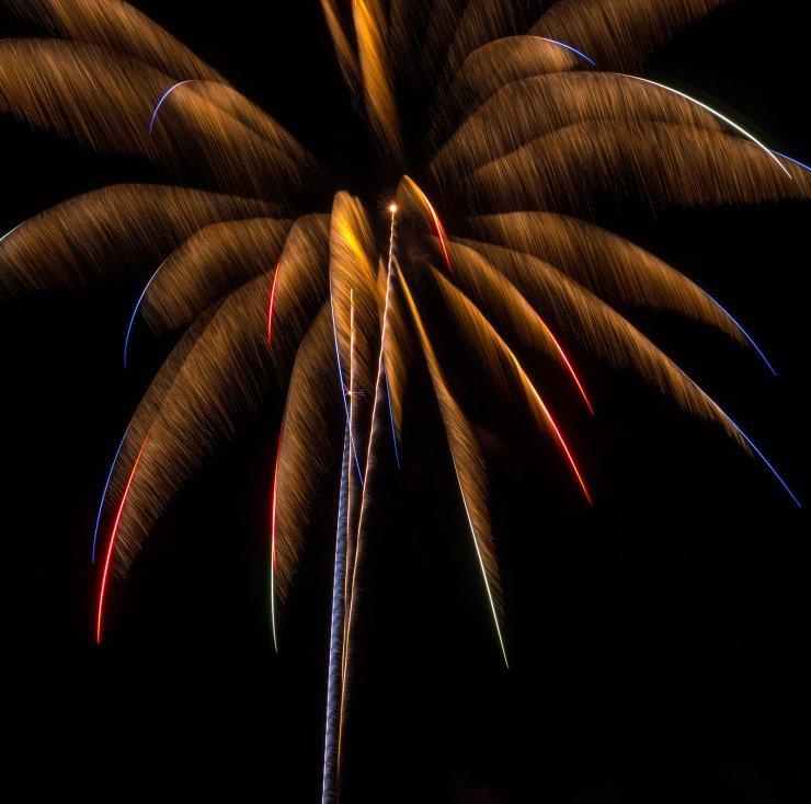 palm firework