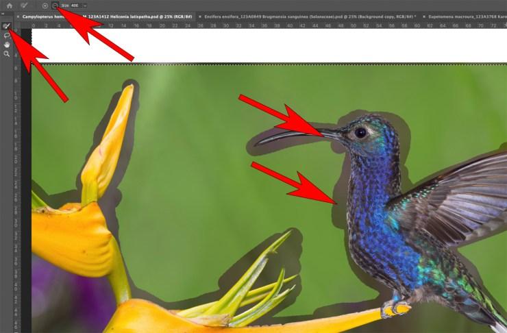 Photoshop Content Aware adjustment