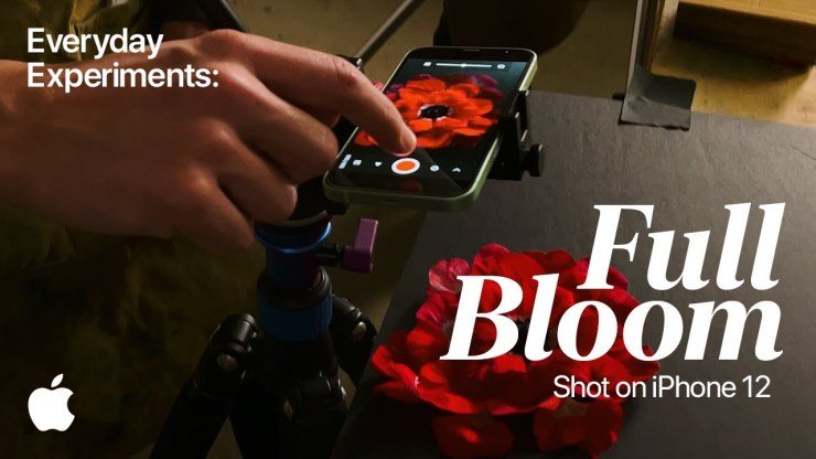 Shot on iPhone 12 | Everyday Experiments: Full Bloom | Apple - youtube
