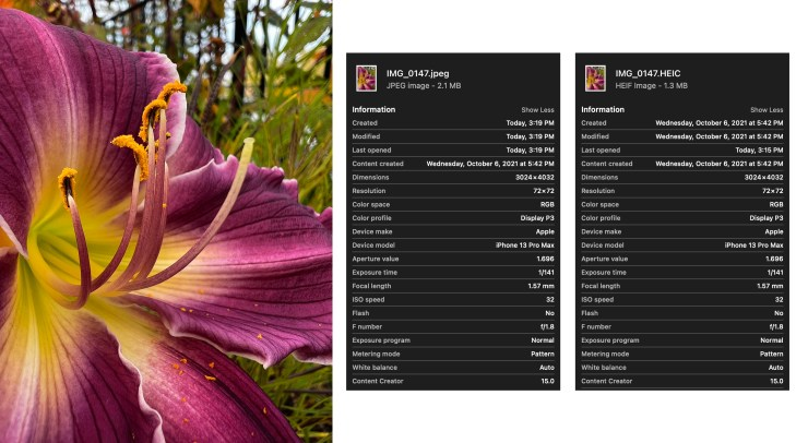 compare JPEG and HEIC from iPhone 13