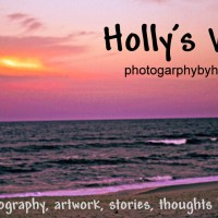 Privacy Policy:Holly's World