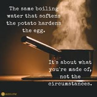 The Same Boiling Water That Softens... - Quotes for Life | Good morning  texts, Water quotes, Good life quotes