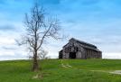 Kentucky Barn by Lisa Flanagan