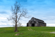 Kentucky Barn by Lisa Flanagan