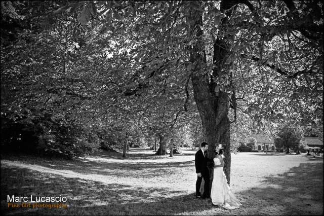 Le symbole du chêne force pour les jeunes mariés
