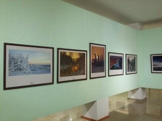 fotofest (11)