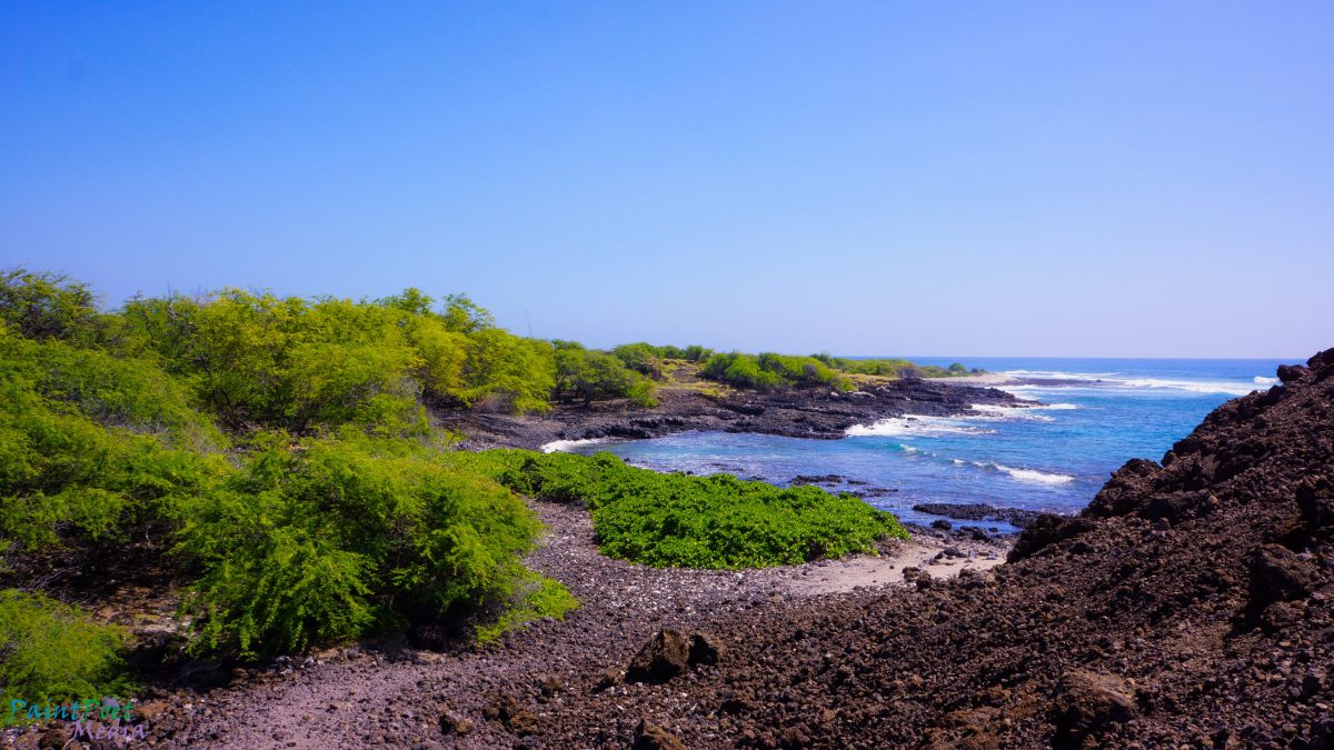 Maui Lava Fields Photography