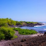 Maui Lava Field Beach