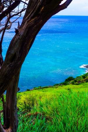 Hiking the Lahaina Pali Trail