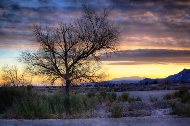 Photographers of Las Vegas - Concept Photography- lone tree at sunset