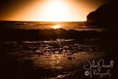 Shelley Beach