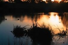 Autumn Sunset--6