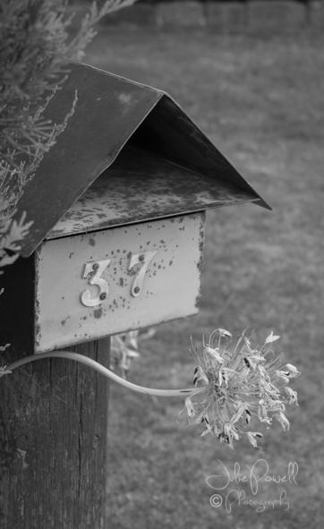 Letterboxes-2