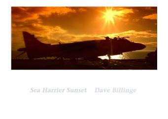 Sea Harrier Sunset