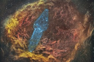 Paul C Swift Squid nebula