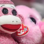 Sock Monkey Photo - Dayton Photographer Alex Sablan