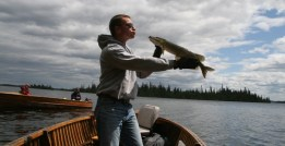Peter catches a Northern