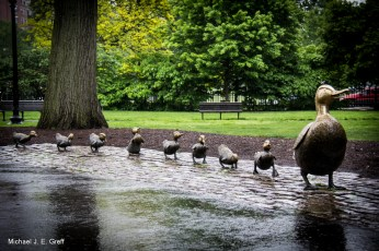 Make Way for Ducklings