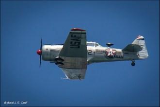 P-51 Mustang, Tuskegee Airmen