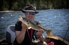 Walleye for Lunch (Photo by Peter Greff)