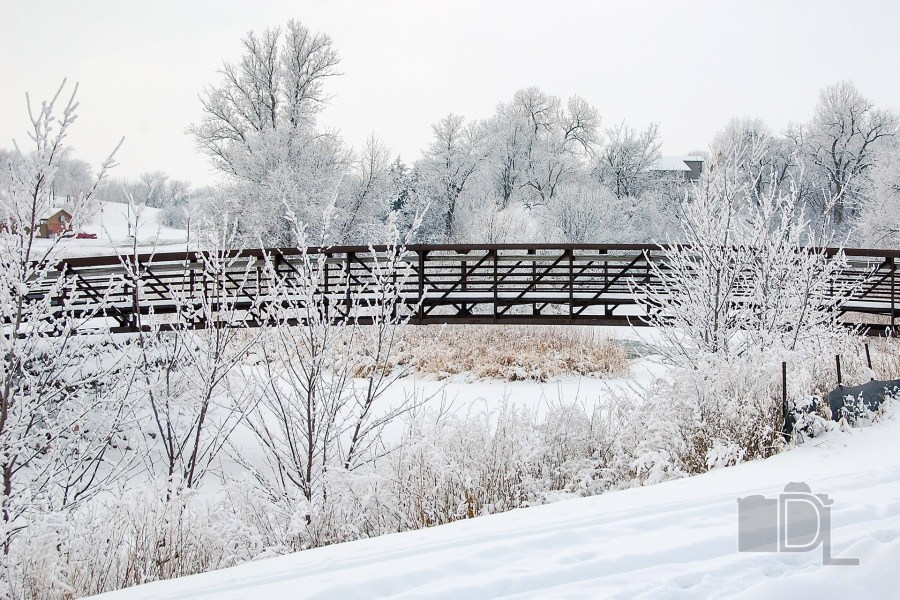 Ice and snow cover riverside trees over a wooden bridge.