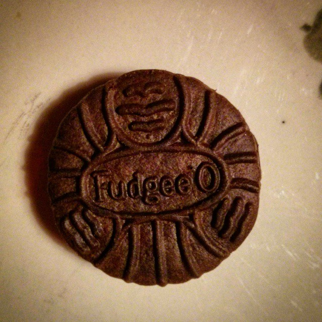 a marco photo of a fudgee-o