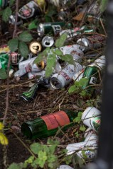 But the bench is also used as a party place at night - these bottles and cans are scattered behind the bench and do not appear to even be cleared.