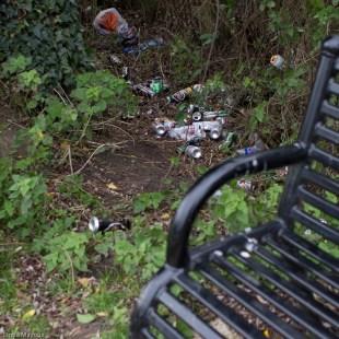 Bench 7: 10 Grassy Corner