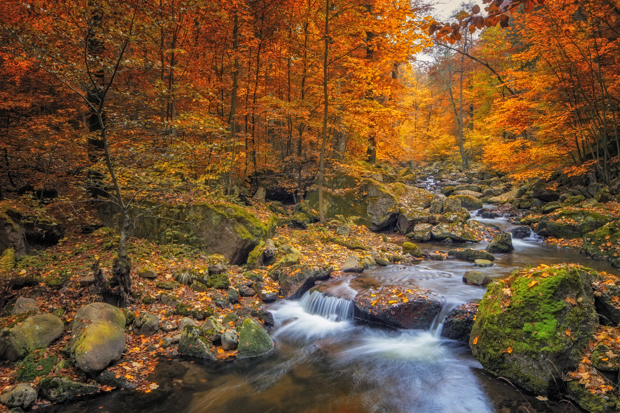 35 Beautiful Fall Photos And Timelapse Video