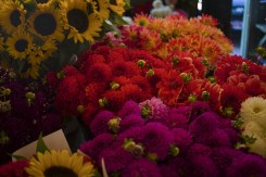 Flowers at a market stall in Pike Place Market in Seattle