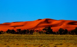 Austarlian Desert