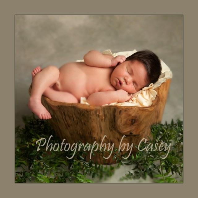 Photographer poses newborn in hollow log