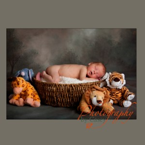 Newborn baby sleeping in basket photographer