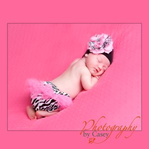 infant baby posing in zebra tutu