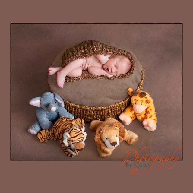 sleeping newborn with jungle animals